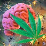 cannabis_vs_epilepsy